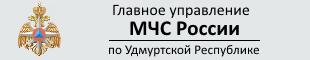Banner_MChS_UR_310x60
